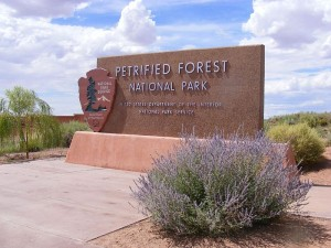 PetrifiedForestOfficialSign